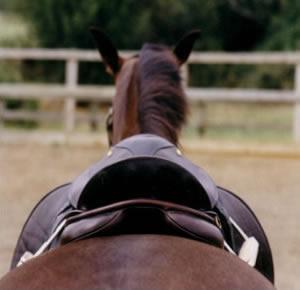 Horse_Saddle_Page